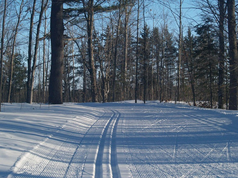 Nara Nature Park ski trails in Houghton