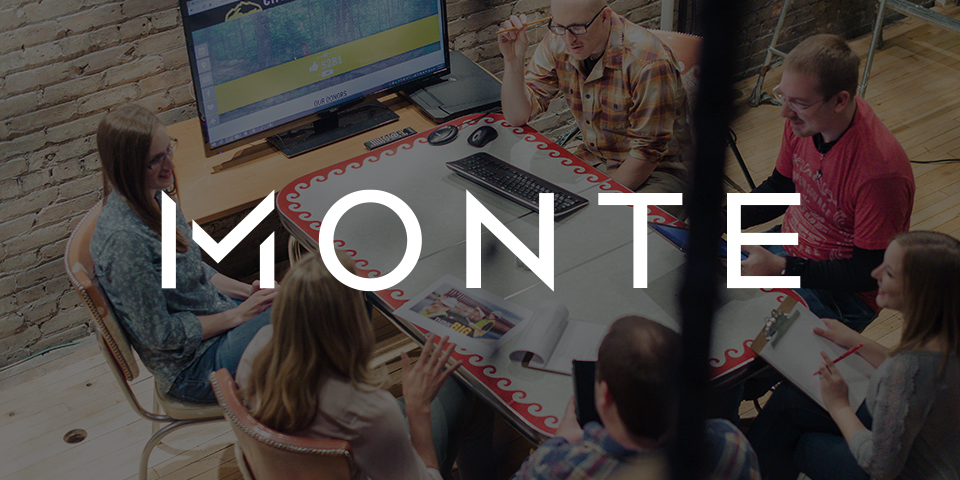 Monte Consulting Image